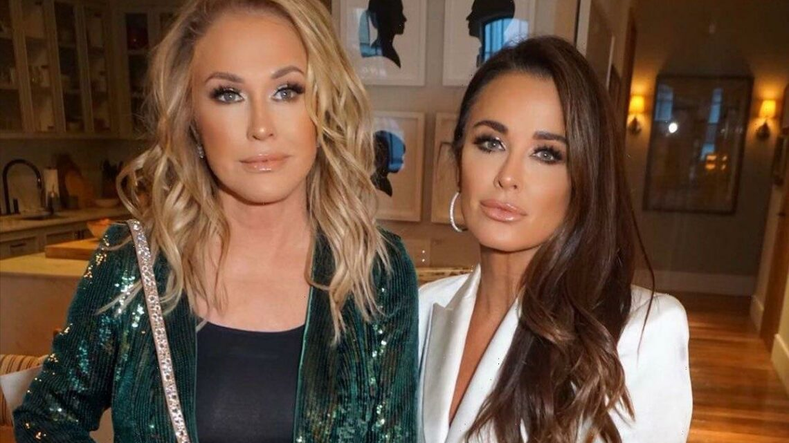 RHOBH'S Kyle Richards and sister Kathy Hilton slammed for 'photoshopping' new pic together to look '30 years younger'