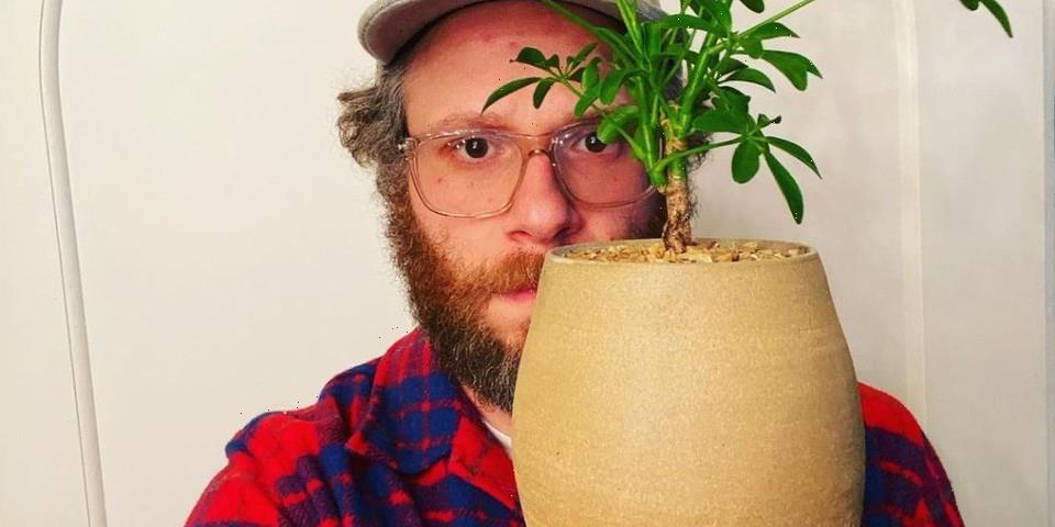Seth Rogen's Ceramic Vase Sells for Over $10,000 USD at Auction