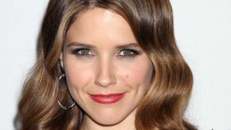 Sophia Bush Just Had This To Say About A One Tree Hill Reboot