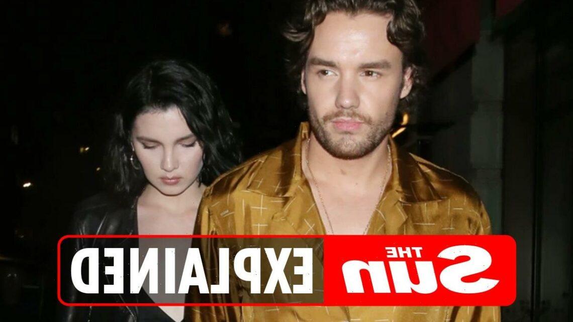 Who is Liam Payne's ex-girlfriend Maya Henry? – The Sun