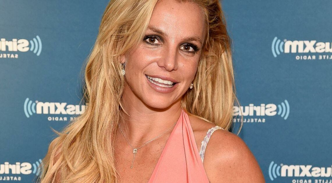 Britney Spears shares plans to visit Cher after conservatorship comes to an end