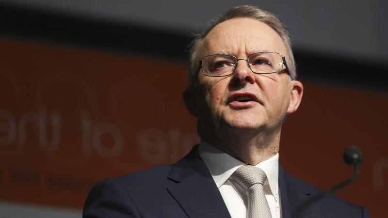By calling out anti-Semitism on the Left, Albanese has created room for himself