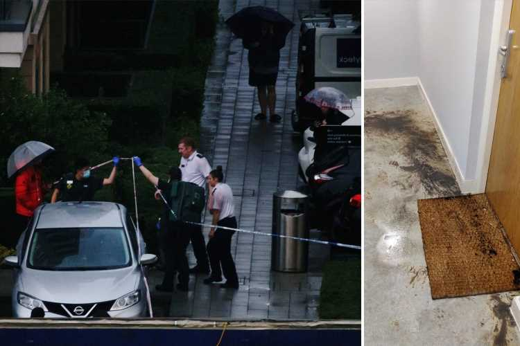 Dad relives horror moment wife and daughter 10, screamed as they were doused with acid by stranger on doorstep