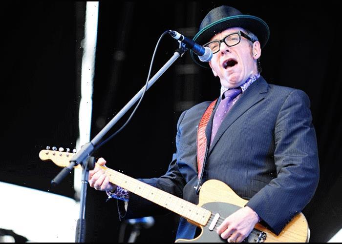 Elvis Costello Dismisses Claims Of Plagiarism By Olivia Rodrigo