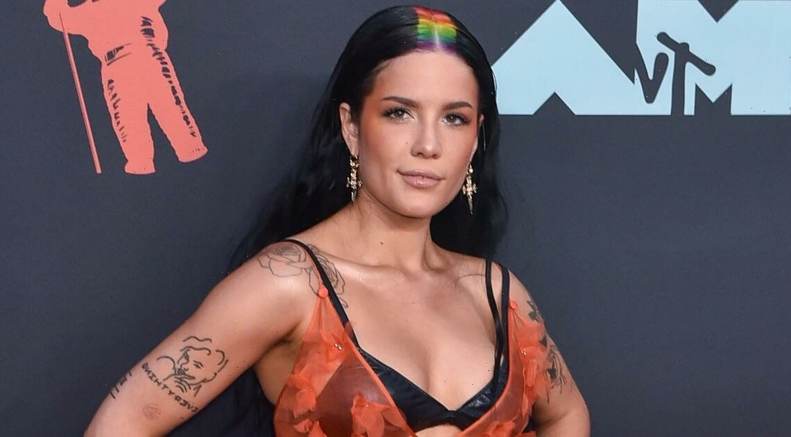 """Halsey Knew Her Partner, Alev Aydin, For Years Before Their """"Relationship Became Romantic"""""""