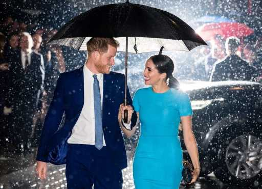 Harry and Meghan: A Royal Guide