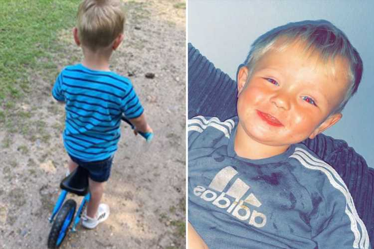 Heartbreaking final picture of boy, 2, who drowned in lake as cops appeal for witnesses over mysterious death