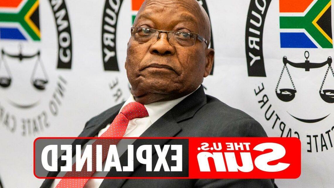 How many wives does Jacob Zuma have?
