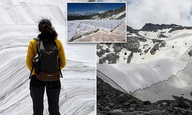 Italy's Presena Glacier is covered with a tarp to stop it from melting