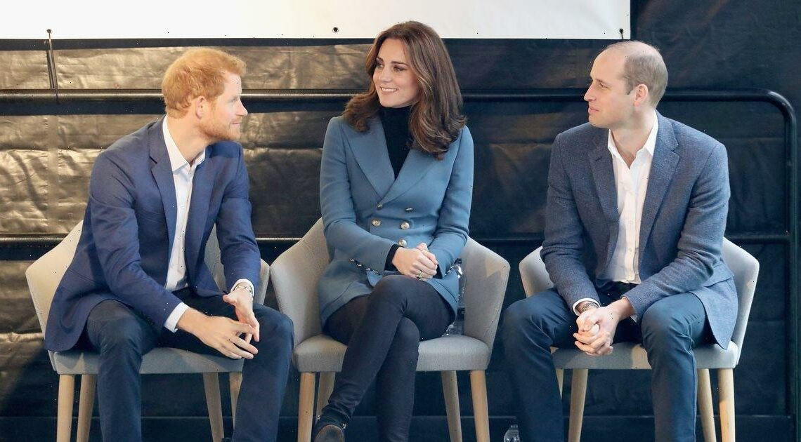 Kate holds key to mending Harry and Williams feud, Dianas ex-butler claims
