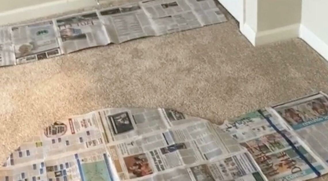 Man amazed by gran's genius newspaper hack that makes moving house easier