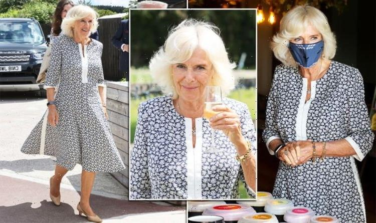 'Perfect outfit of choice': Camilla, Duchess of Cornwall wears gorgeous dress in Wales