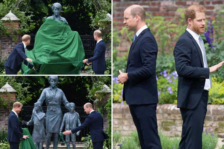 Prince William & Harry 'did NOT have heart-to-heart but had glass of champagne together' after unveiling Diana statue
