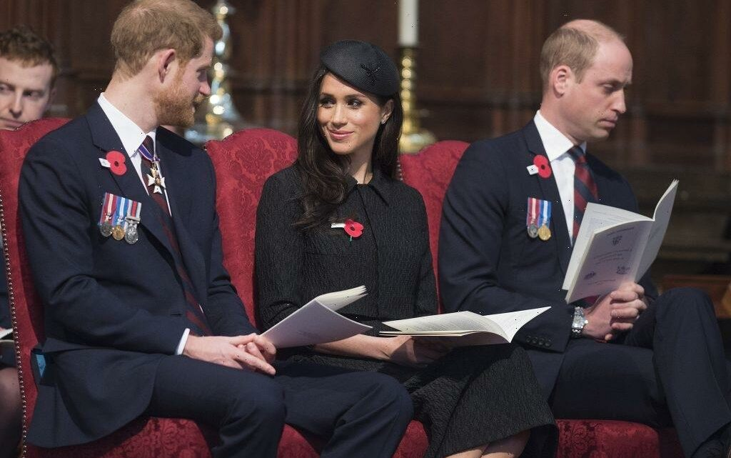 Prince William and Prince Harry Can't Reconcile as Long as Meghan Markle Is in the Picture, Royal Expert Claims