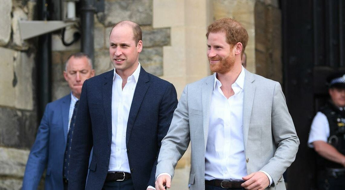 Prince William and Prince Harry 'bond over England's Euros victory' as they 'exchange texts'