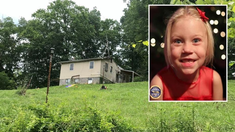 Summer Wells' brothers removed from family home; dad says 'It's probably better for them'