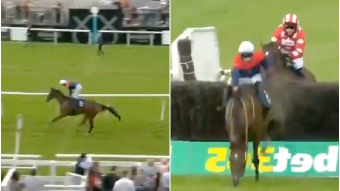 Watch jockey's incredible recovery from near-certain fall before somehow going onto win
