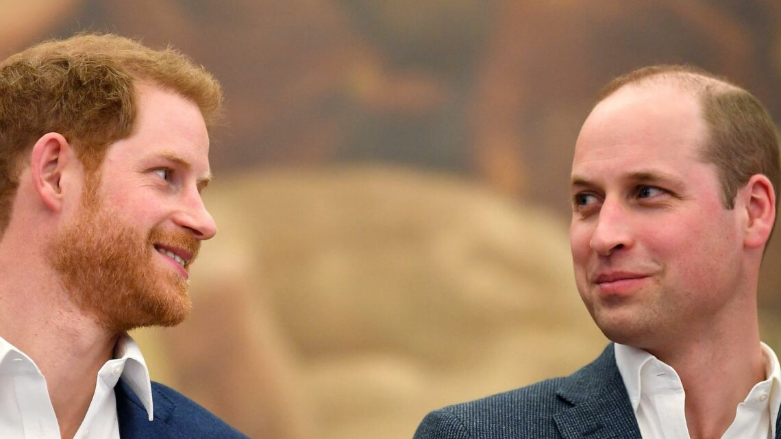 Why Harry And William's Arrival To Diana's Statue Unveiling Hints At Hope For Their Future