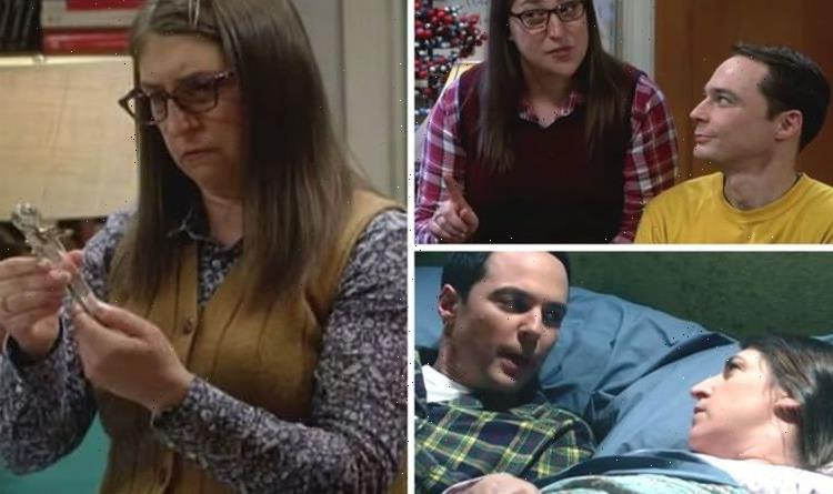 Big Bang Theory: What is the crystal chakra wand? What does the wedding present do?