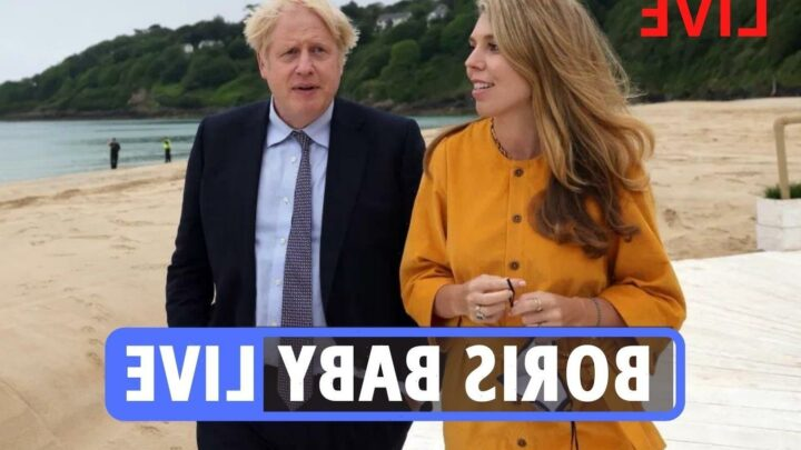 Boris Johnson baby news – Carrie Symonds PREGNANT with her & PM's rainbow baby after miscarriage pain  months before