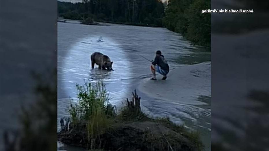 Indiana man survives bear attack in Alaska by deploying bear spray