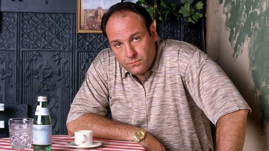 James Gandolfini was 'hungover' during 'Sopranos' fight scene, says co-star Robert Patrick