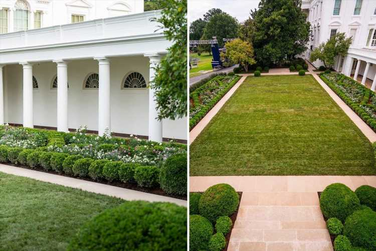 Melania Trump's new rose garden is defended by experts after she blasted criticism of her White House renovations