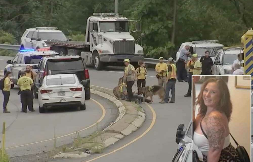 Missing woman may have been ejected through sunroof  before ending up in creek