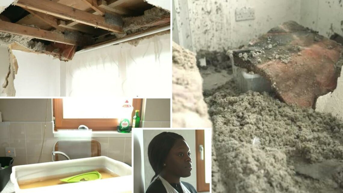 Mum 'treated like an animal' after council flat ceiling COLLAPSED leaving her in A&E