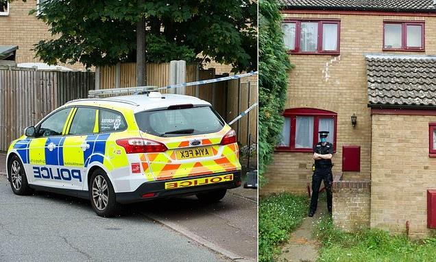 Police probe two mystery deaths at house of 'reclusive' family