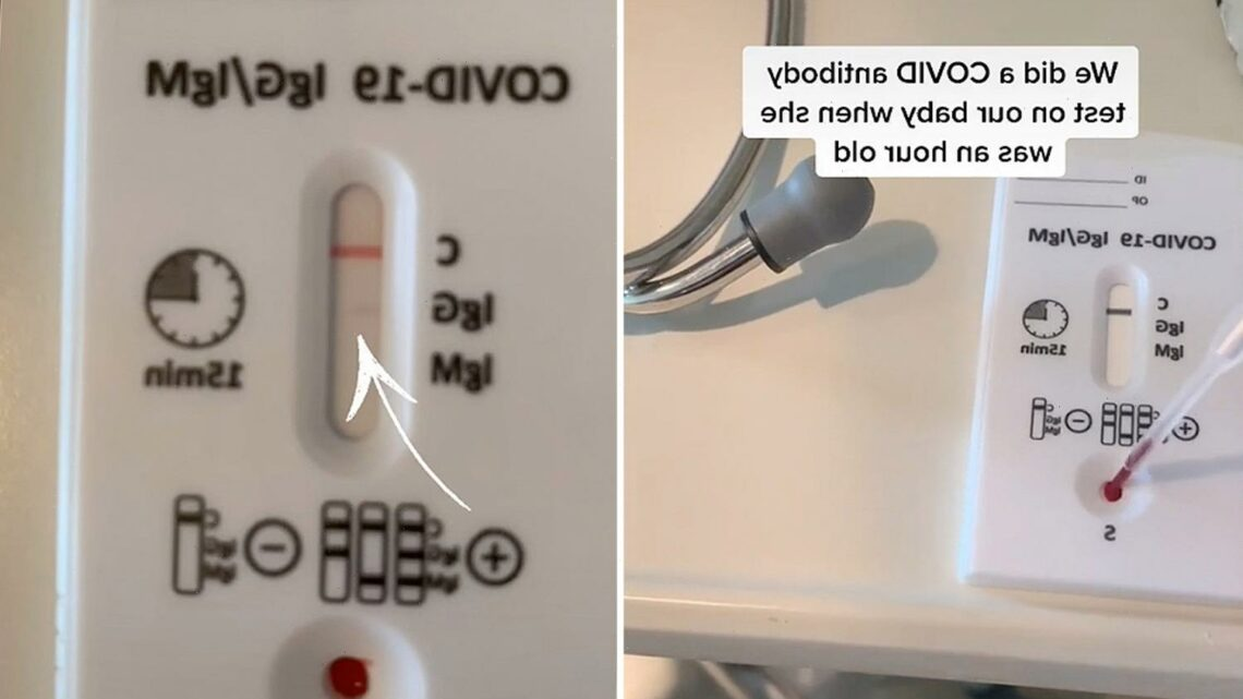 Vaccinated mom does Covid-19 antibody test on newborn to see if she got protection in-vitro
