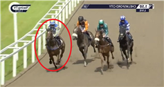 Watch wild horse 'violently' take out two other runners mid-race gifting Oisin Murphy 'easiest win of the season'