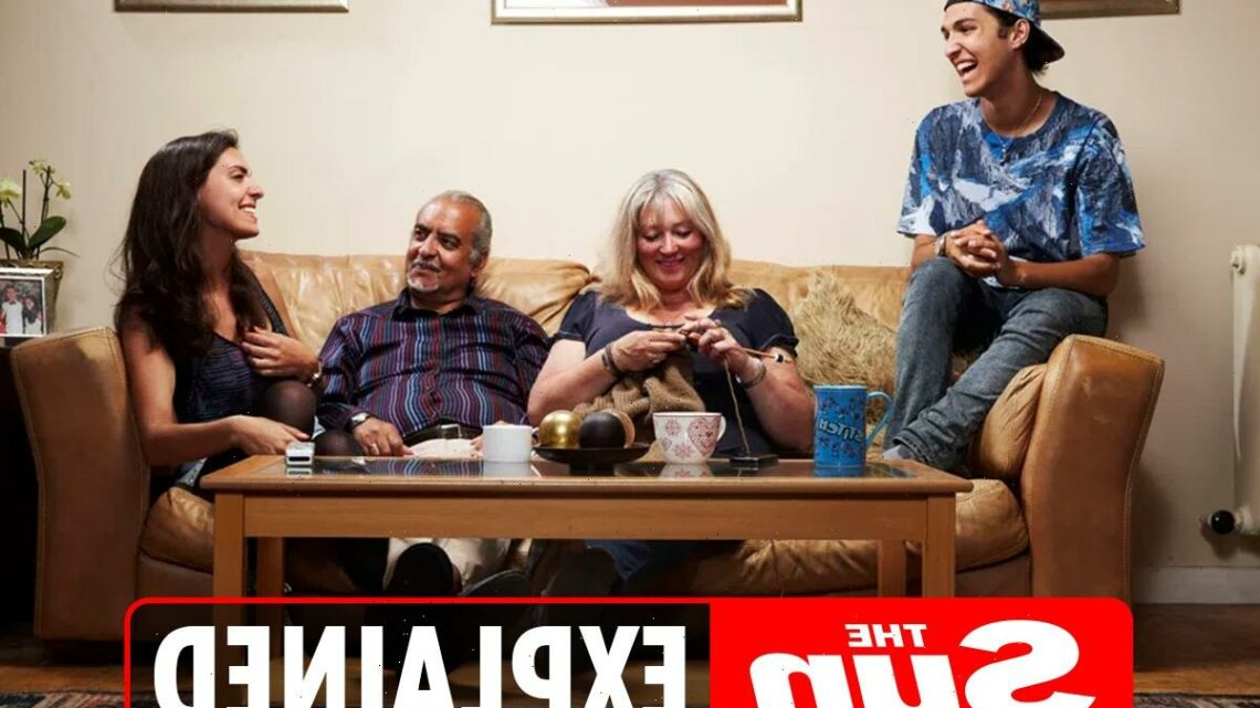 Who are the Michael family on Gogglebox? – The Sun