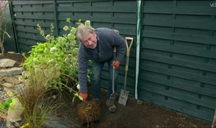 Alan Titchmarsh warns of risk to root bound plants – 'they can starve!'
