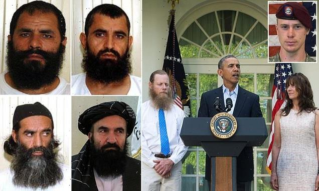 Four Taliban leaders freed in swap for Bergdahl join new government