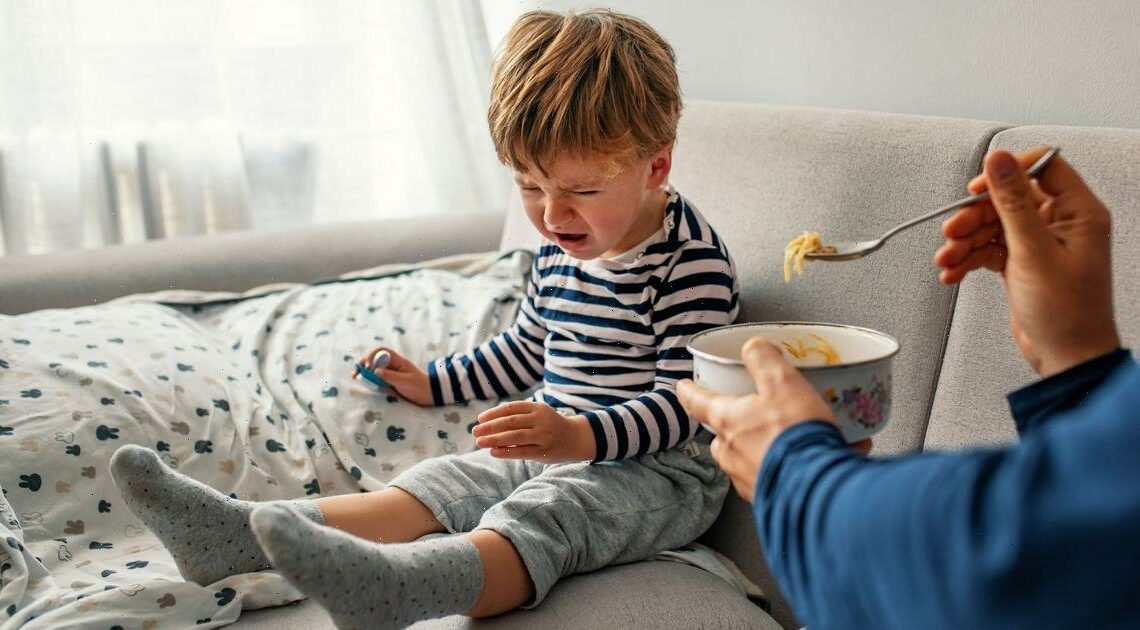'My toddler has ruined my marriage, ended my career and taken over my life'