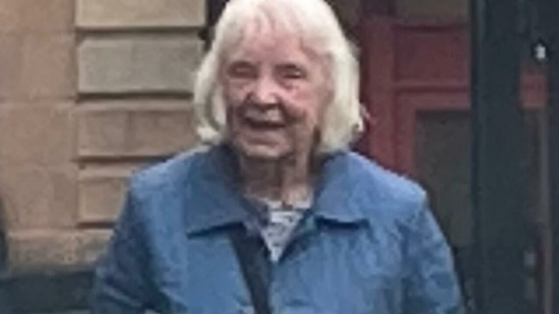 Pensioner, 84, ran over child in hit-and-run before driving home for cup of tea