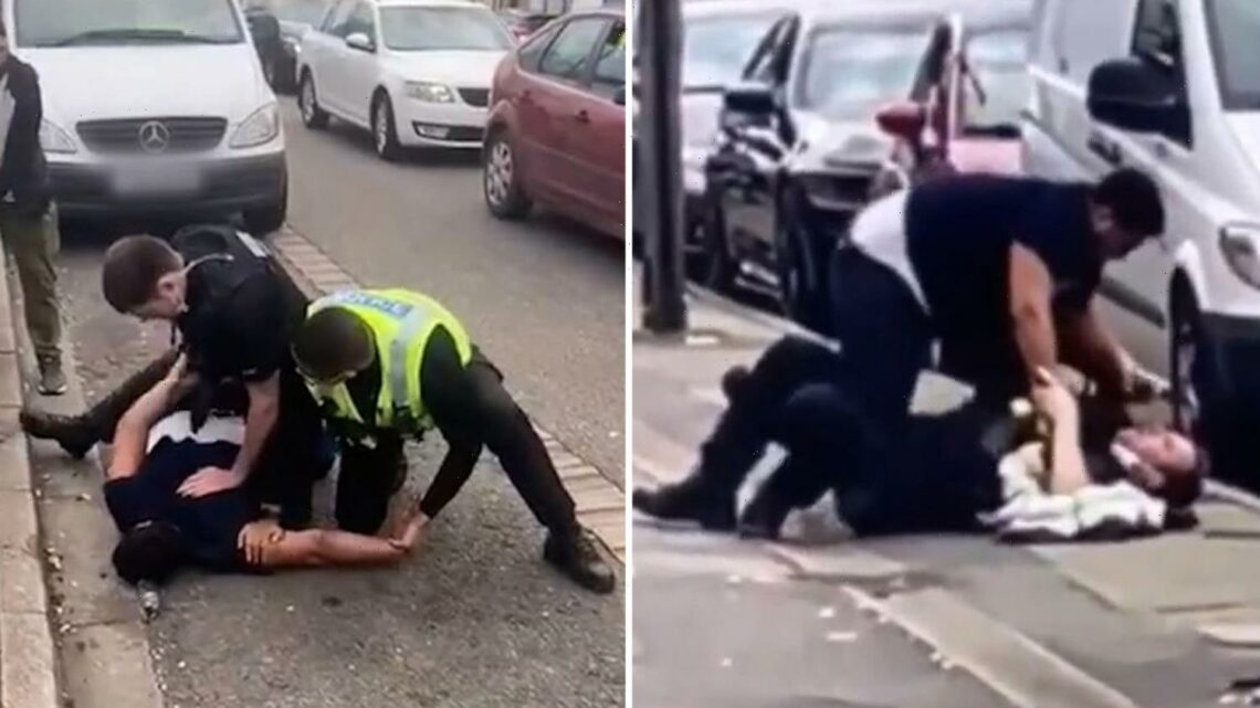 Shocking moment police officer is pinned to the floor and PEPPER SPRAYED by yob in street