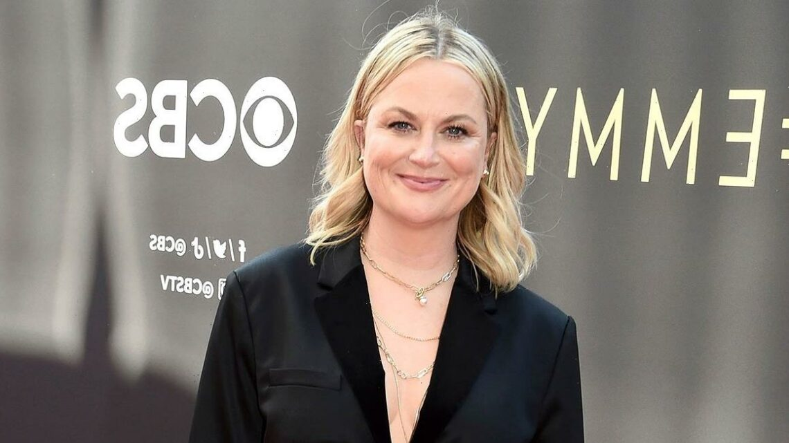 The Beauty Hack Behind Amy Poehler's Glowy-Not-Greasy Emmys Glam