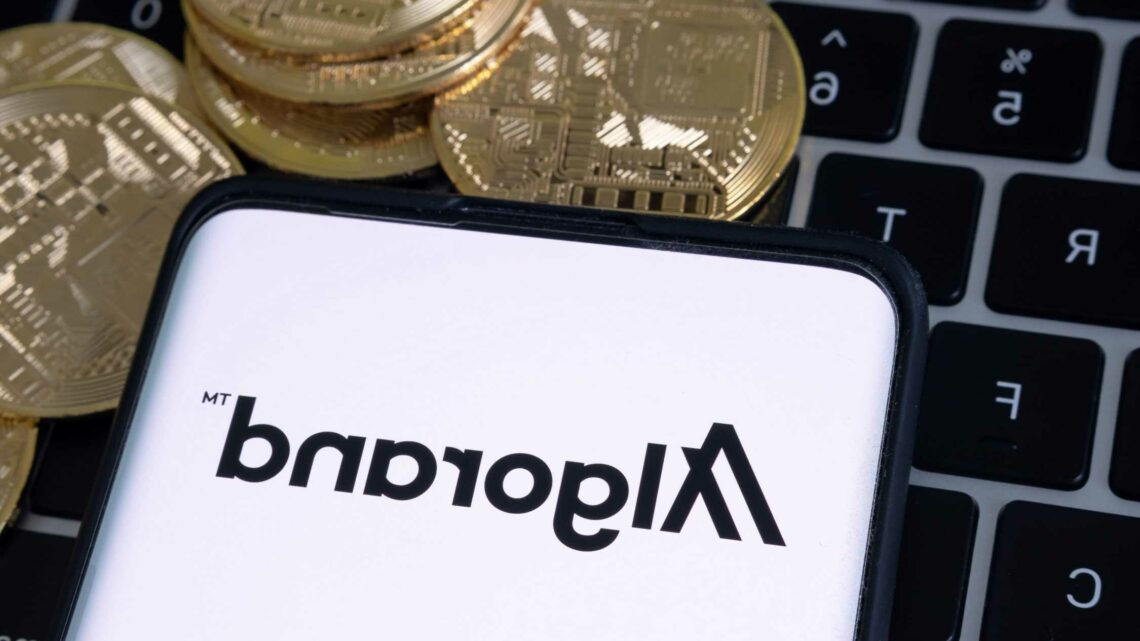 What is Algorand and what are the risks of the cryptocurrency?