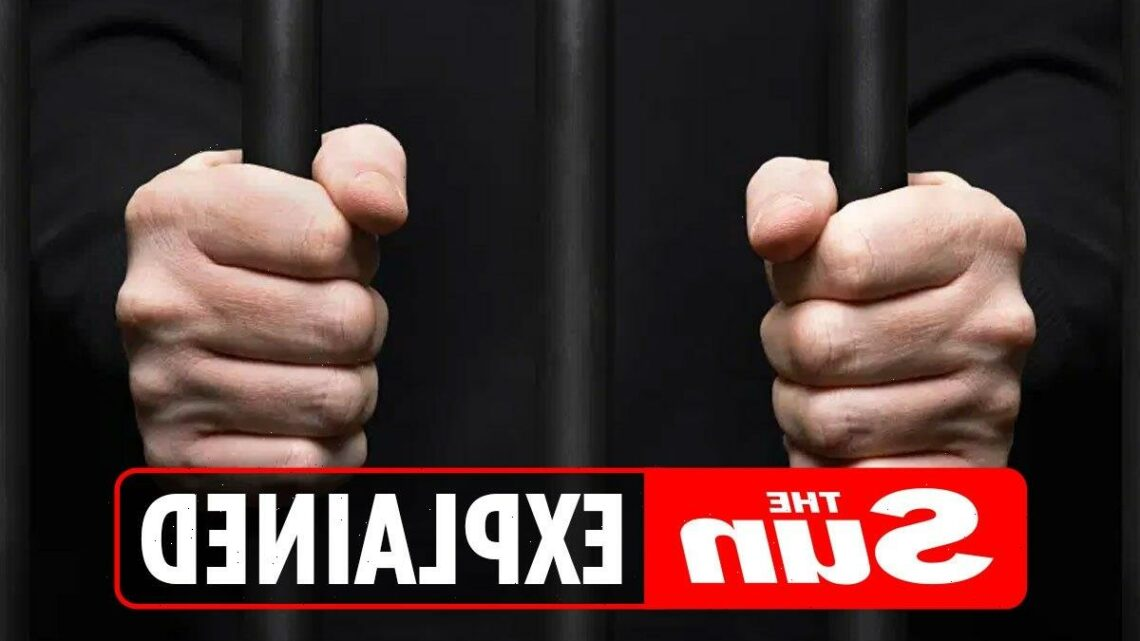 What is bail and what does it mean if you're released on police bail? – The Sun