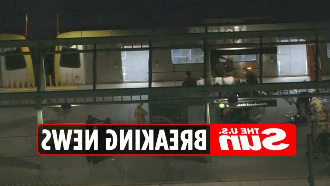 Willowbrook station 'shooting' – 'Multiple people hurt and hospitalized' in Downtown Los Angeles
