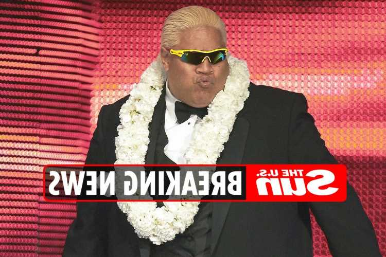 Wrestler Rikishi says his niece, 16, was 'murdered' in San Francisco shooting and begs fans for help