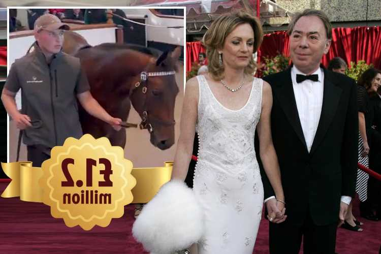 Andrew Lloyd Webber and wife net £1.2m in racing's version of the football transfer window after sale of superstar colt