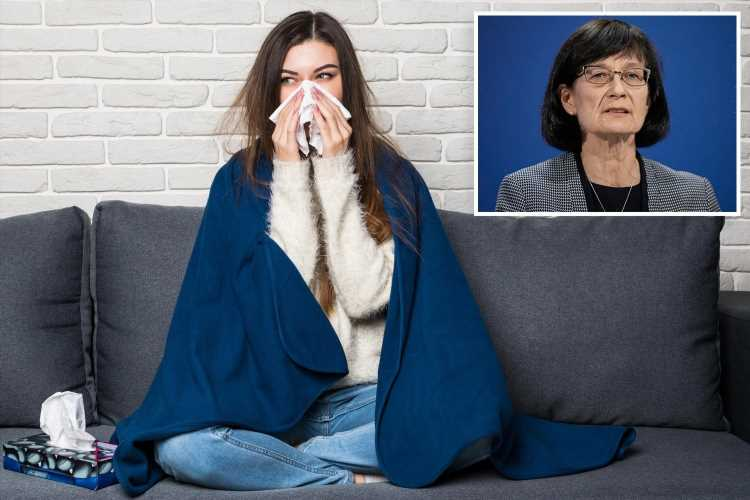 Brits get 'permission' to take MORE sick days rather than 'grin and bear' bugs