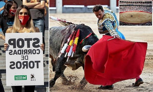 Bullfighting could be BANNED for under 16s in Spain