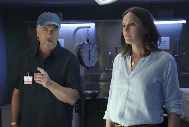CSI: Vegas Recap: Gil 'Bugs' Out! Plus, Catherine's Tie to the Upgraded Lab