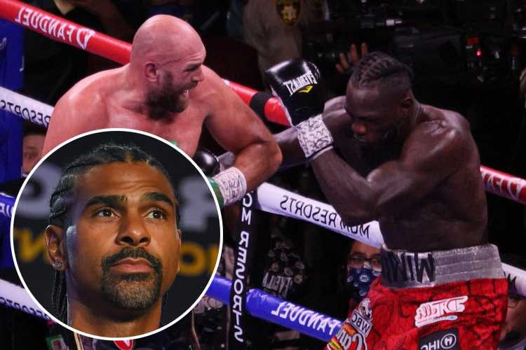 Deontay Wilder 'finished out on the battlefield' but with 'no bullets left' in Tyson Fury trilogy loss, says David Haye