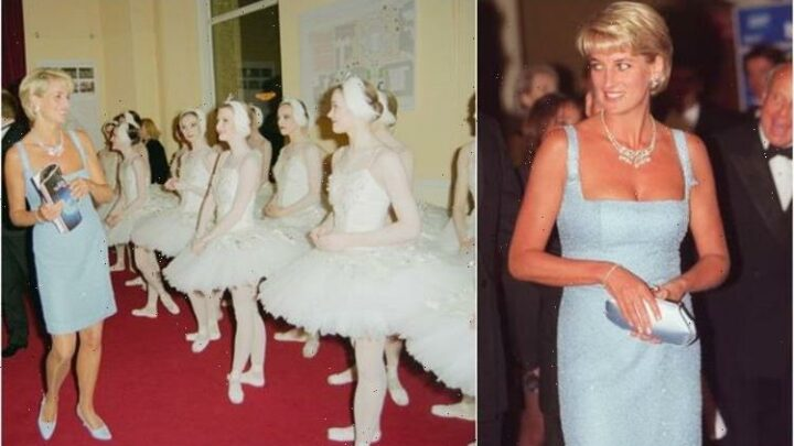 Hidden meaning behind Princess Diana £8m Swan Lake necklace – last jewel worn in public