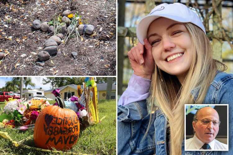 Why Gabby Petito's case is so popular – Coroner explains why it has been a 'media circus' and rocked US